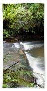 Jungle Stream  Hand Towel