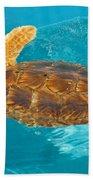 Loggerhead Sea Turtle Bath Towel