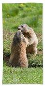Marmots Bath Towel
