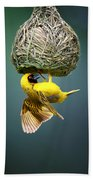 Masked Weaver At Nest Bath Towel