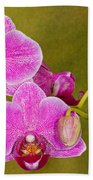 Moth Orchid Bath Towel