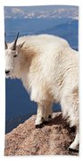Mountain Goat On Mount Evans Bath Towel