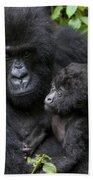Mountain Gorilla And Infant Bath Towel