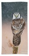 Northern Hawk Owl Bath Towel