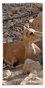 Nubian Ibex Bath Towel
