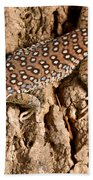 Ocellated Lizard Timon Lepidus Bath Towel
