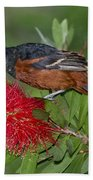 Orchard Oriole Bath Towel
