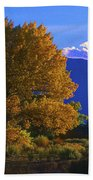 Owens Valley Fall Colors  Bath Towel