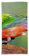 Painted Bunting Passerina Ciris Bath Towel