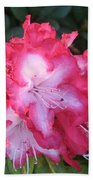 Pink Rhododendron Bath Towel