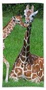 Reticulated Giraffe Calf With Mother Bath Towel