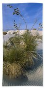 Soaptree Yucca In Gypsum Dunes White Bath Towel