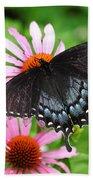 Spicebush Swallowtail Butterfly Bath Towel