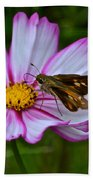 The Beauty Of Nature Hand Towel