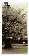 Tree With Large White Flowers Bath Towel