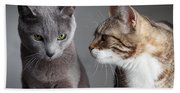 Two Cats Bath Towel