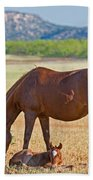 Wild Horses Mother And Foal Bath Towel