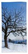 Winter Landscapes Hand Towel