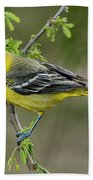 Young Orchard Oriole Bath Towel
