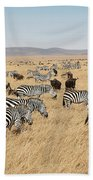 Zebra Migration Maasai Mara Kenya Bath Towel