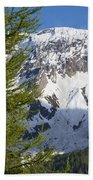 Snow-capped Mountain Bath Towel