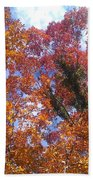 Autumn Color Bath Towel