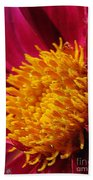 Dahlia From The Showpiece Mix Bath Towel