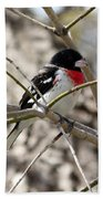 Rose Breasted Grosbeak Bath Towel