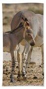 African Wild Ass Equus Africanus Bath Towel