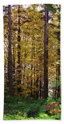 Autumn 5 Bath Towel