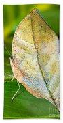 Autumn Leaf Butterfly Bath Towel