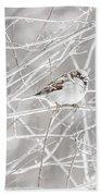 Bird Bath Towel