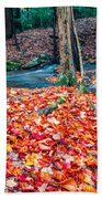 Chesterfield Gorge New Hampshire Bath Towel