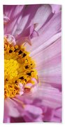Double Click Cosmos Named Rose Bonbon Bath Towel