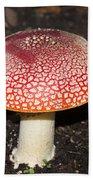Fairy Mushrooms Bath Towel