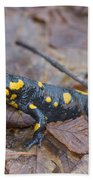 Fire Salamander Hand Towel