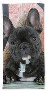 French Bulldog Puppy Bath Towel
