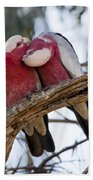Galahs Bath Towel