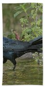Great-tailed Grackle Bath Towel