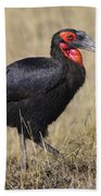 Ground Hornbill Bath Towel