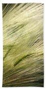 Hordeum Jubatum Grass Bath Towel