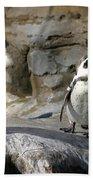 Humboldt Penguin Bath Towel