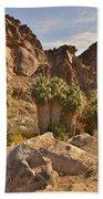 Indian Canyons Bath Towel