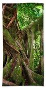 Kipahulu Banyan Tree Bath Towel