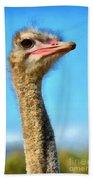 Ostrich Bath Towel
