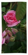 3 Pink Roses Bath Towel