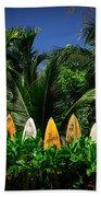Surf Board Fence Maui Hawaii Bath Sheet by Edward Fielding