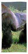 Western Lowland Gorilla Silverback Bath Towel
