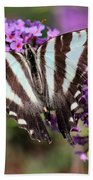 Zebra Swallowtail Butterfly At Butterfly Bush Hand Towel