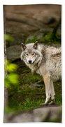 Timber Wolf Bath Towel